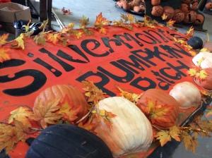 PumpkinPatchSign